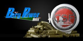 Peters Laden CSF Berg Power mix